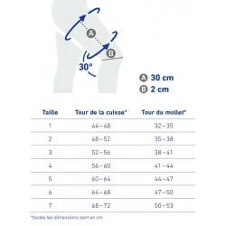 Tableau de taille MyoTrain Tableau de taille MyoTrain - Bandage de cuisse - Français